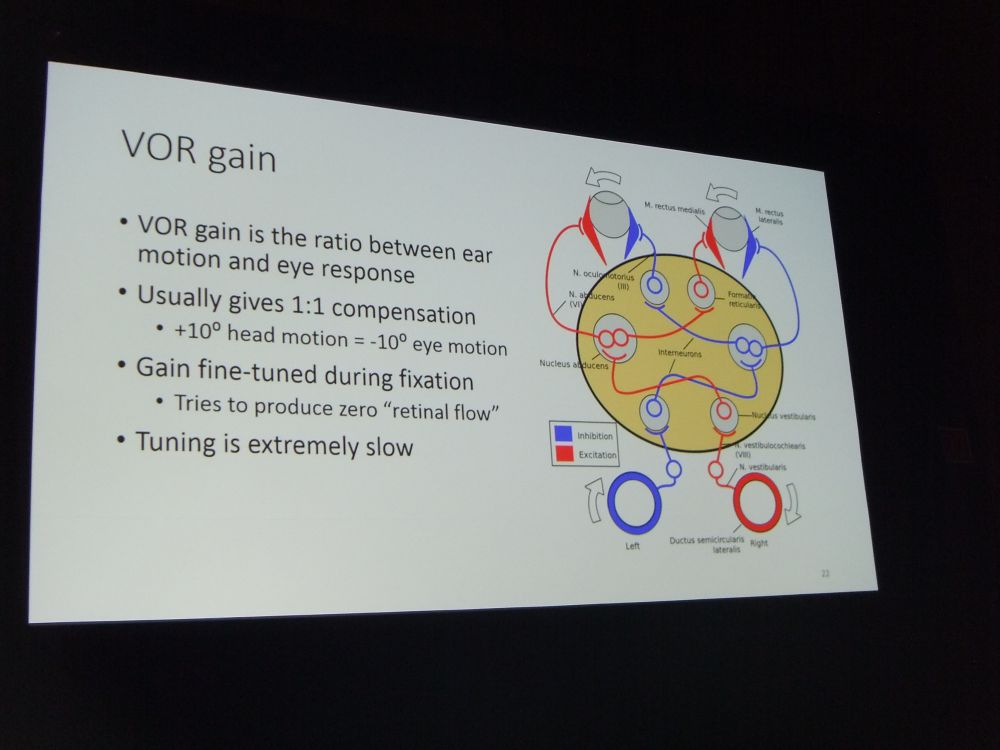 VOR-Gain Explained
